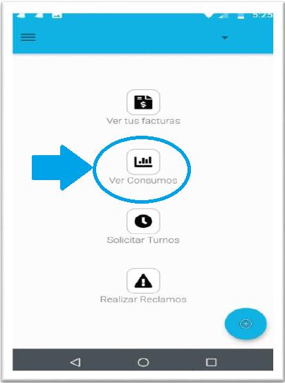ver_consumos_app_01